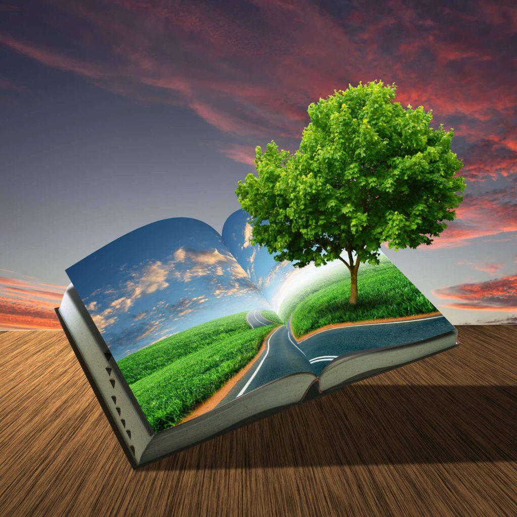 La mejor editorial Agencia del libro publicar un libro gratis - Fotolia 36429604 L 1024x1024 - Publicar un libro gratis es posible.